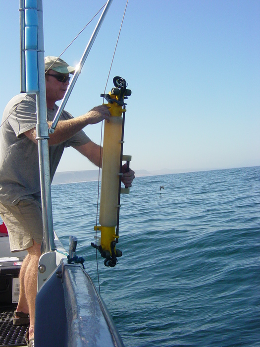 Sampling in Elandsbay, South Africa
