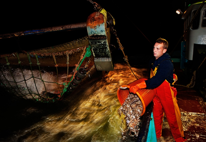 Michael, working on the beam trawler 'Dini', (0.62), fishing for grey shrimp (also known as Crangon crangon) off the coast of Ostend, Belgium
