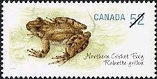 Canadian Postage Stamp (2007): Northern Cricket Frog