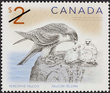 Canadian Postage Stamp (2005): Peregrine falcon