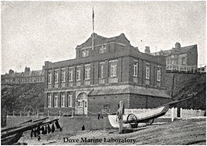 Dove Marine Laboratory in 1909