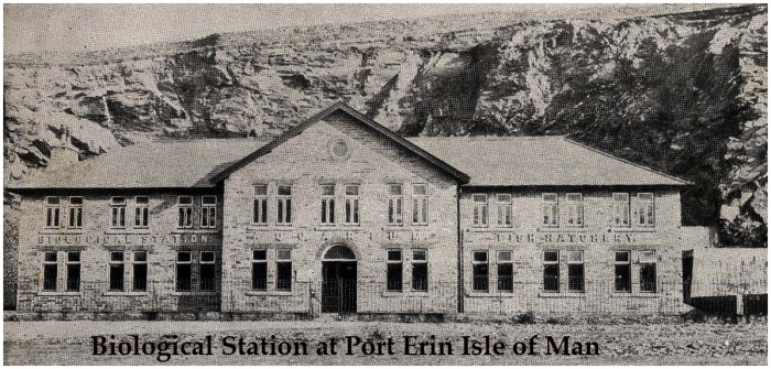 Isle of Man Station in 1908
