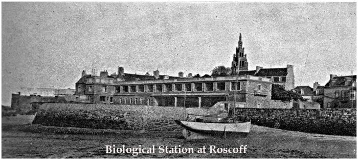Station Biologique Roscoff  in 1908