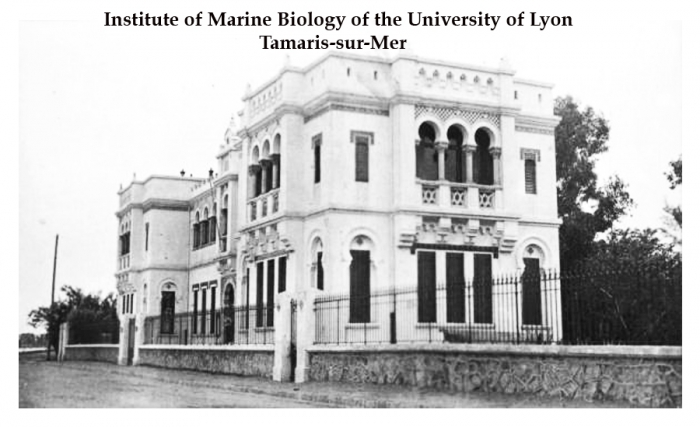 Institute of Marine Biology of the Univerrsity of Lyon, Tamaris-sur-Mer