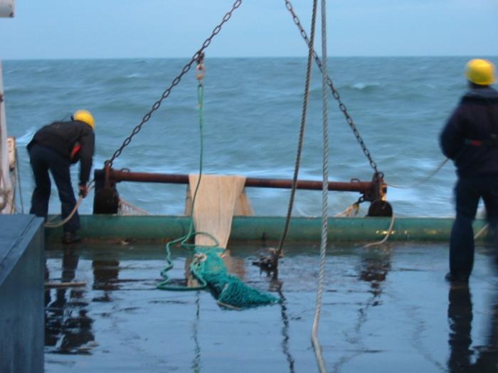 Beam trawlling