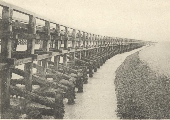 Massart (1908, foto 001)