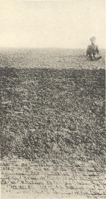 Massart (1908, foto 002)