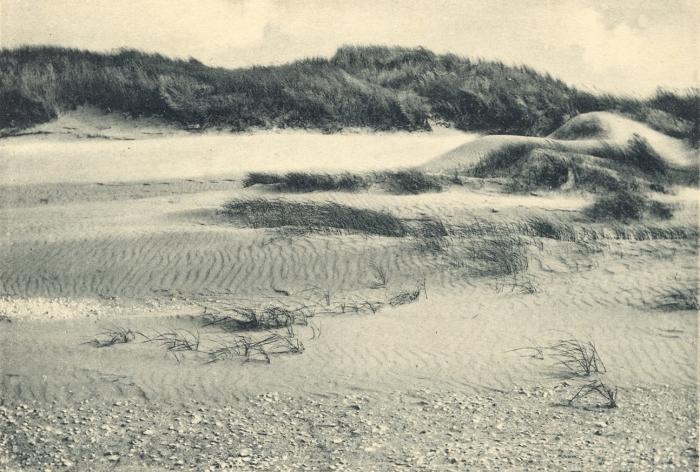 Massart (1908, foto 010)
