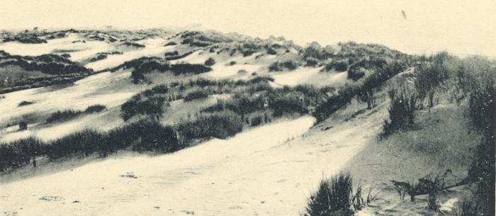 Massart (1908, foto 011)