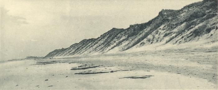 Massart (1908, foto 014)