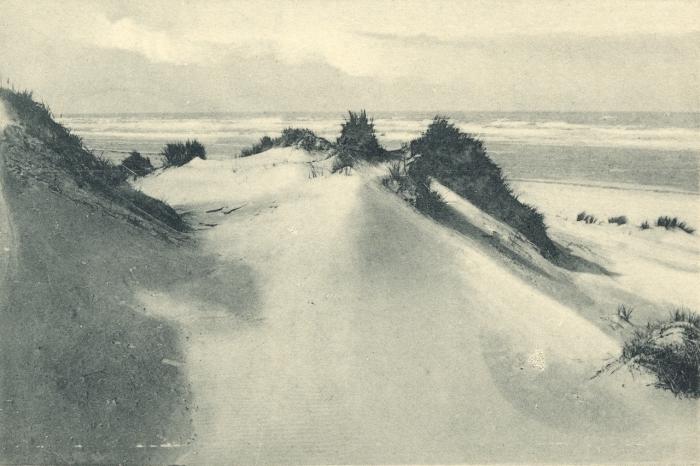 Massart (1908, foto 015)