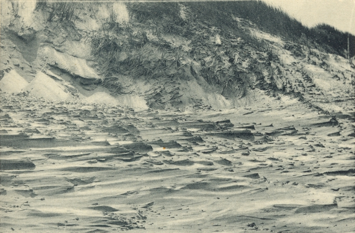 Massart (1908, foto 016)