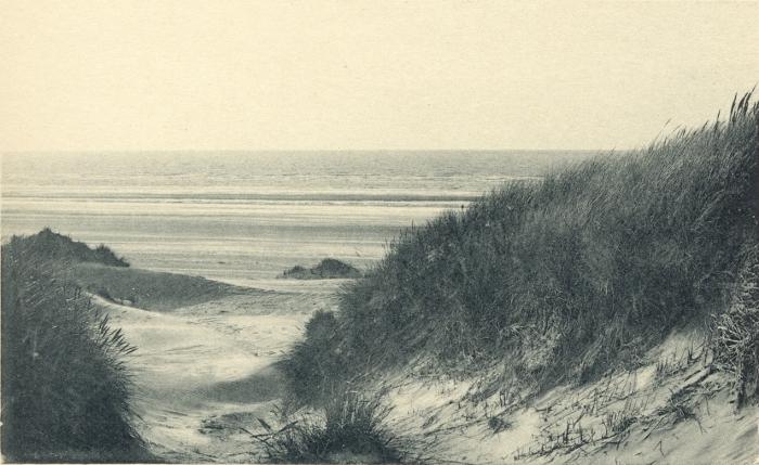 Massart (1908, foto 017)