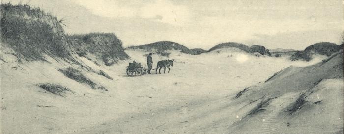Massart (1908, foto 021)