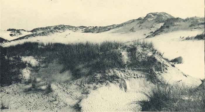 Massart (1908, foto 023)
