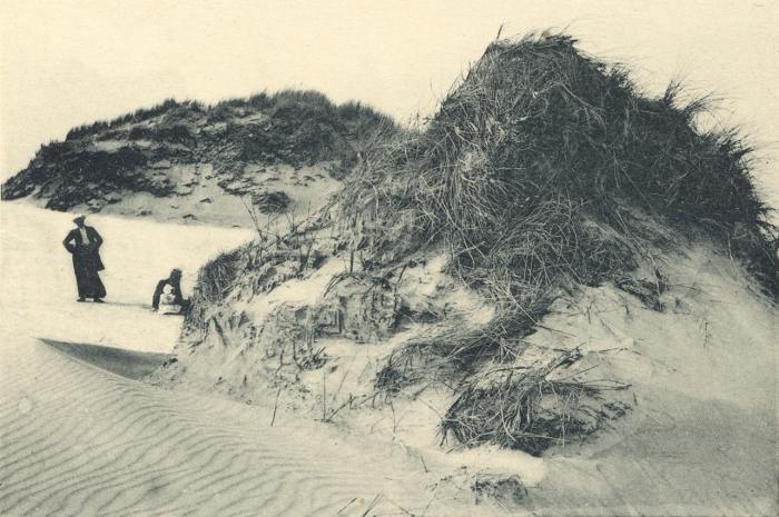Massart (1908, foto 026)