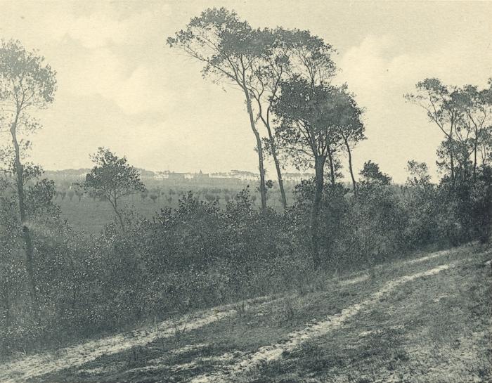 Massart (1908, foto 083)