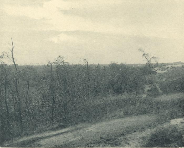 Massart (1908, foto 084)