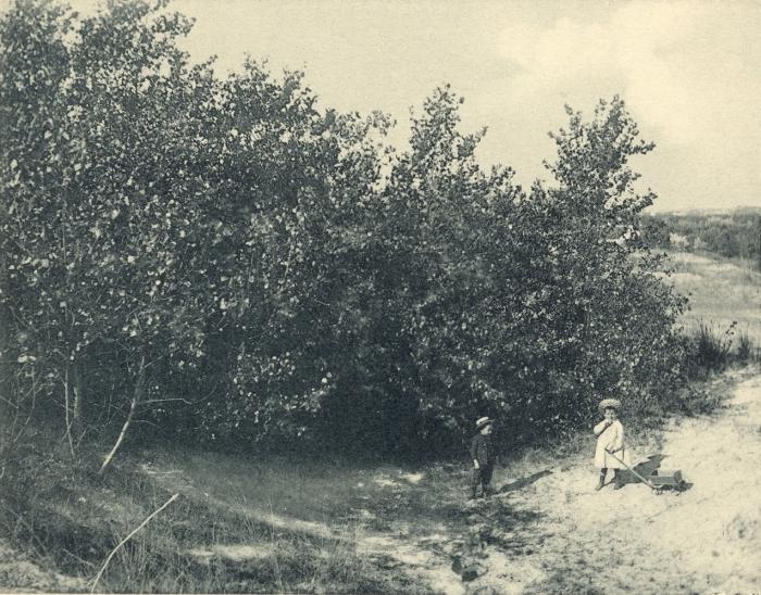 Massart (1908, foto 085)