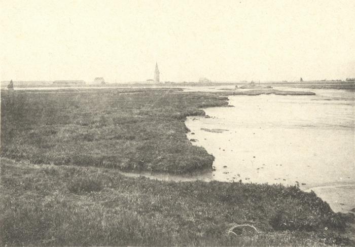 Massart (1908, foto 099)