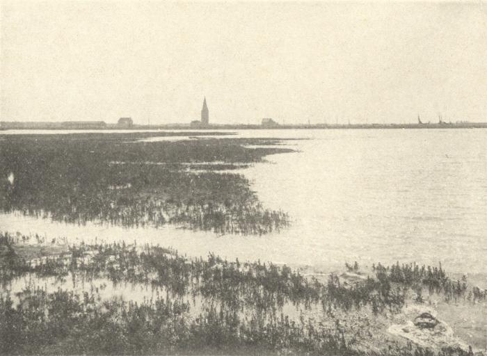 Massart (1908, foto 100)