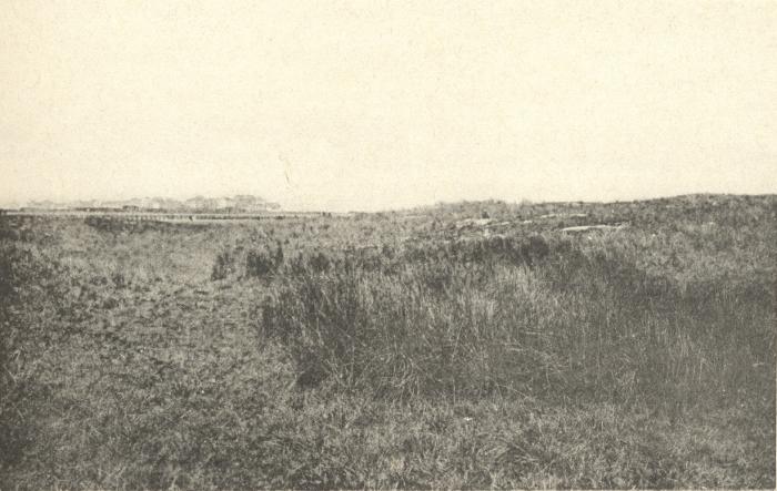 Massart (1908, foto 108)