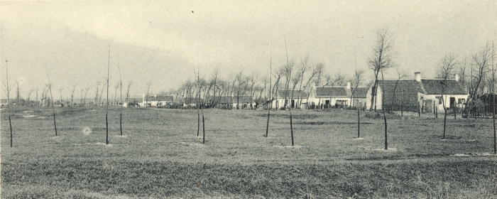 Massart (1908, foto 179)