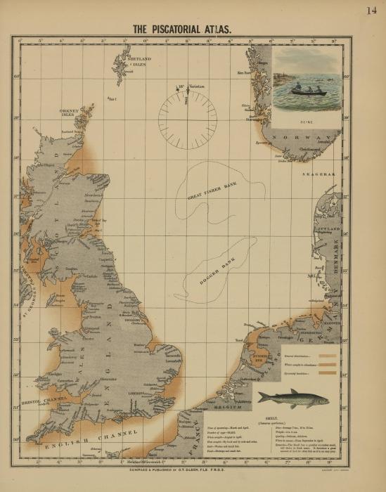 Olsen (1883, kaart 14)