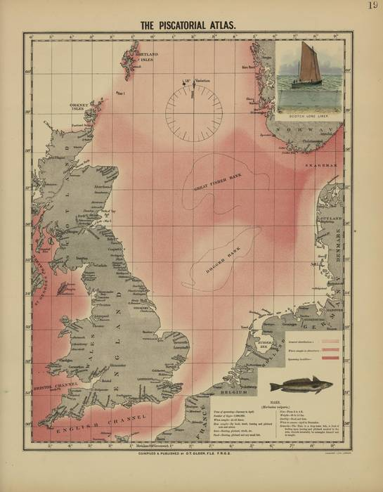 Olsen (1883, kaart 19)