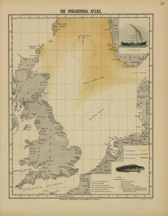 Olsen (1883, kaart 21)