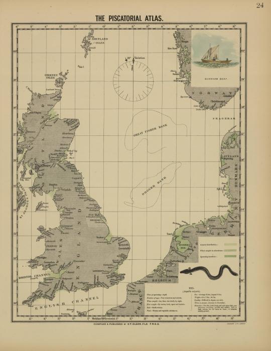 Olsen (1883, kaart 24)