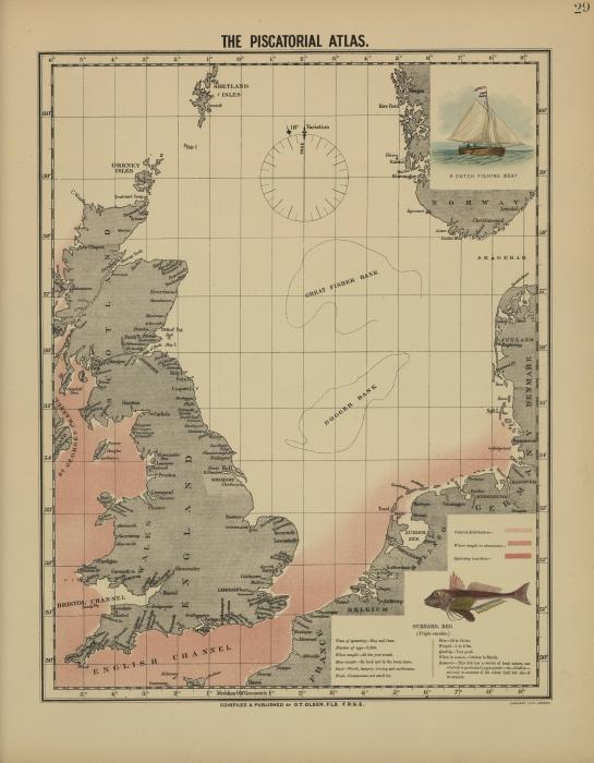 Olsen (1883, kaart 29)
