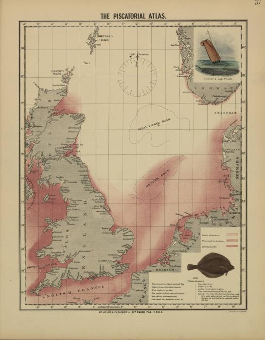 Olsen (1883, kaart 37)