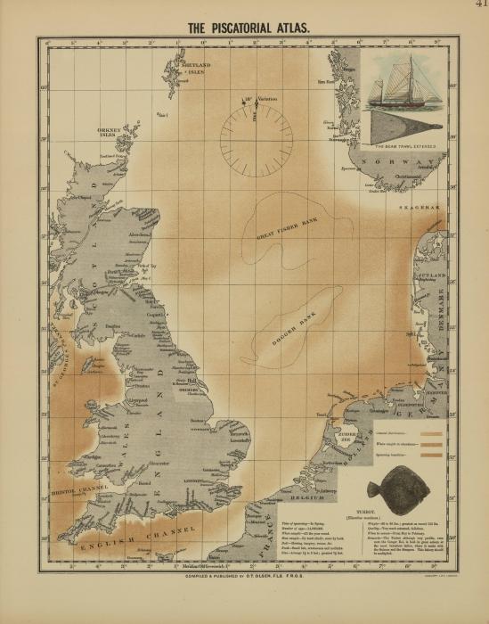 Olsen (1883, kaart 41)