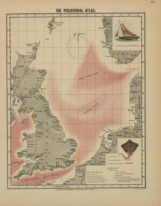 Olsen (1883, kaart 43)