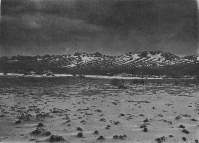 Massart (1913, foto 07)