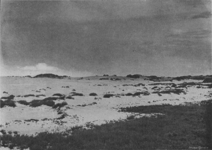 Massart (1913, foto 11)