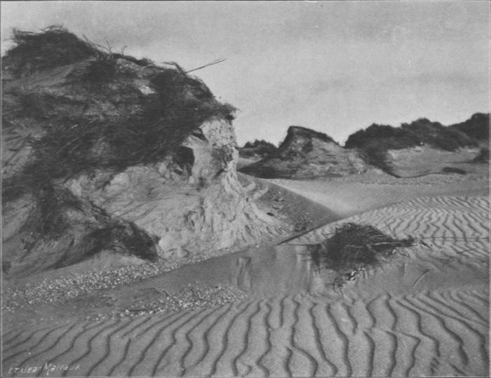 Massart (1913, foto 58)