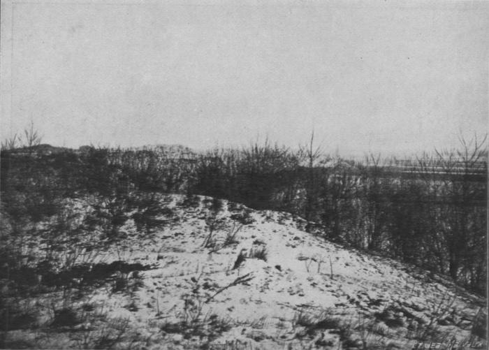 Massart (1913, foto 64)