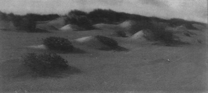 Wery (1908, foto 7)
