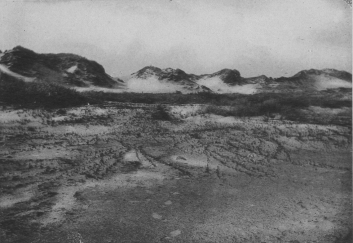 Wery (1908, foto 20)