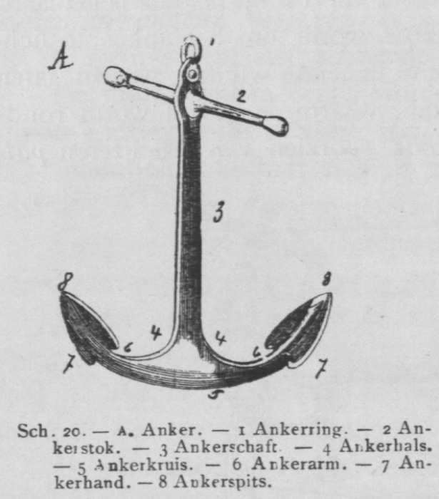 Bly (1902, fig. 20)