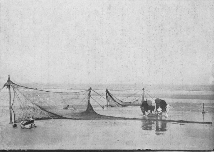 de Spot (1942, foto 10)