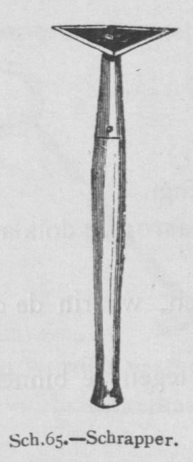 Bly (1902, fig. 65)