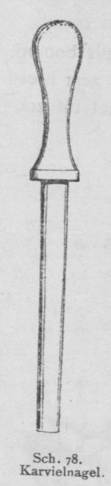 Bly (1902, fig. 78)