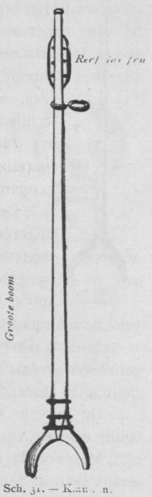 Bly (1902, fig. 31)