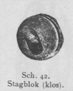 Bly (1902, fig. 42)