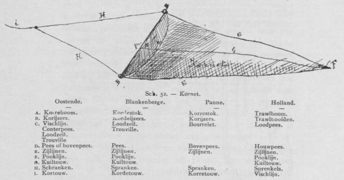 Bly (1902, fig. 52)