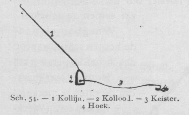 Bly (1902, fig. 54)
