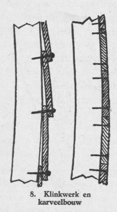 Derolez (1950, fig. 08)